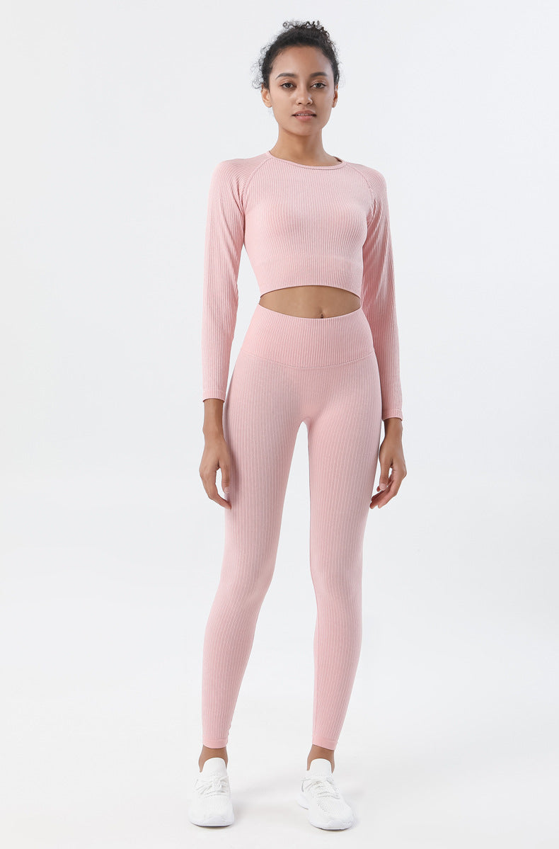 Astoria Seamless Ribbed Sleeved Crop - Soft Pink