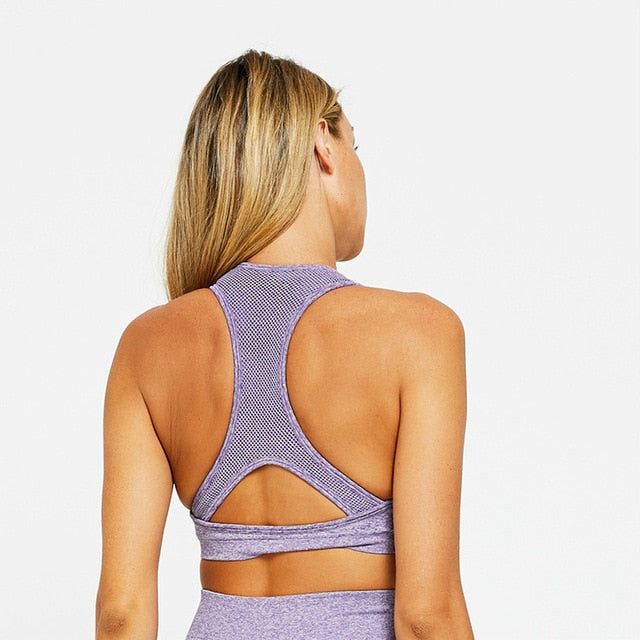 Astoria VELOCITY Sports Crop - Lilac