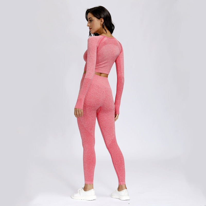 Astoria VELOCITY Sleeved Crop - Watermelon Pink