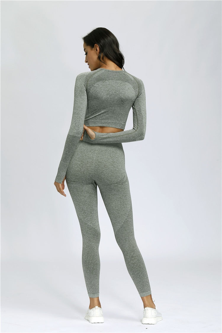 Astoria VELOCITY Sleeved Crop - Faded Sage