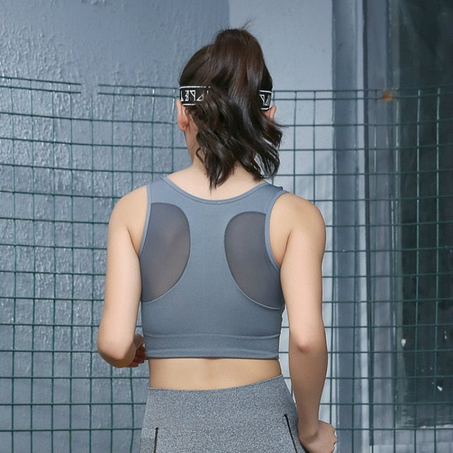 Astoria Seamless Sport Mesh Crop