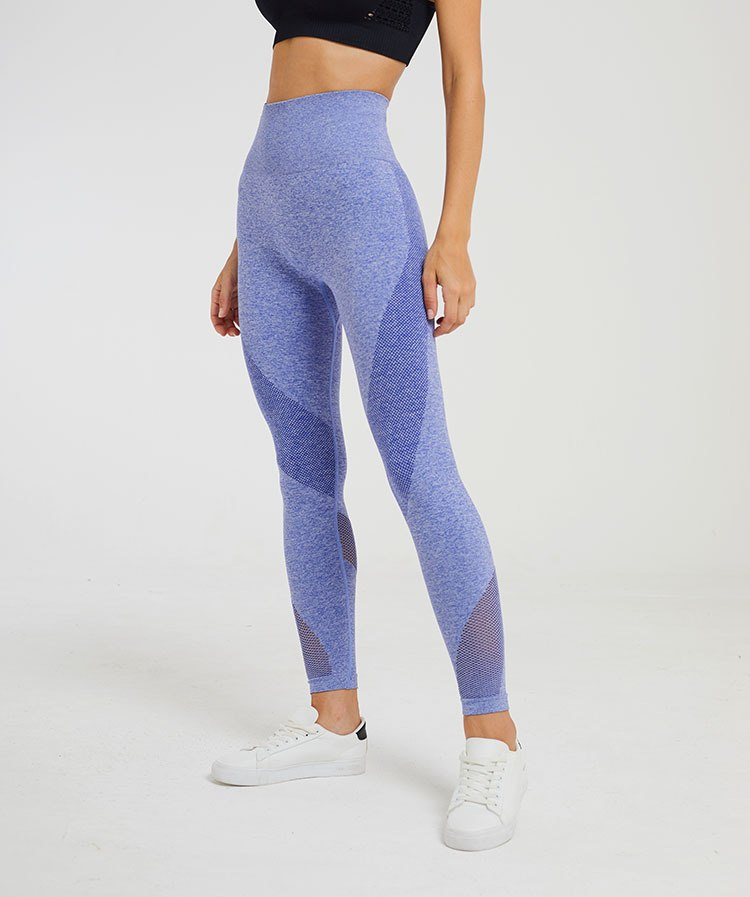 Astoria Seamless Mesh Full Length Legging - Bright Blue