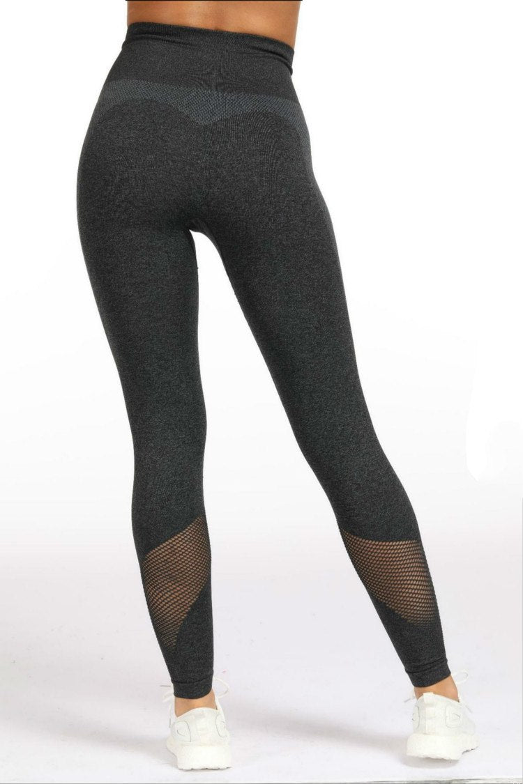 Astoria Seamless Mesh Full Length Legging - Black