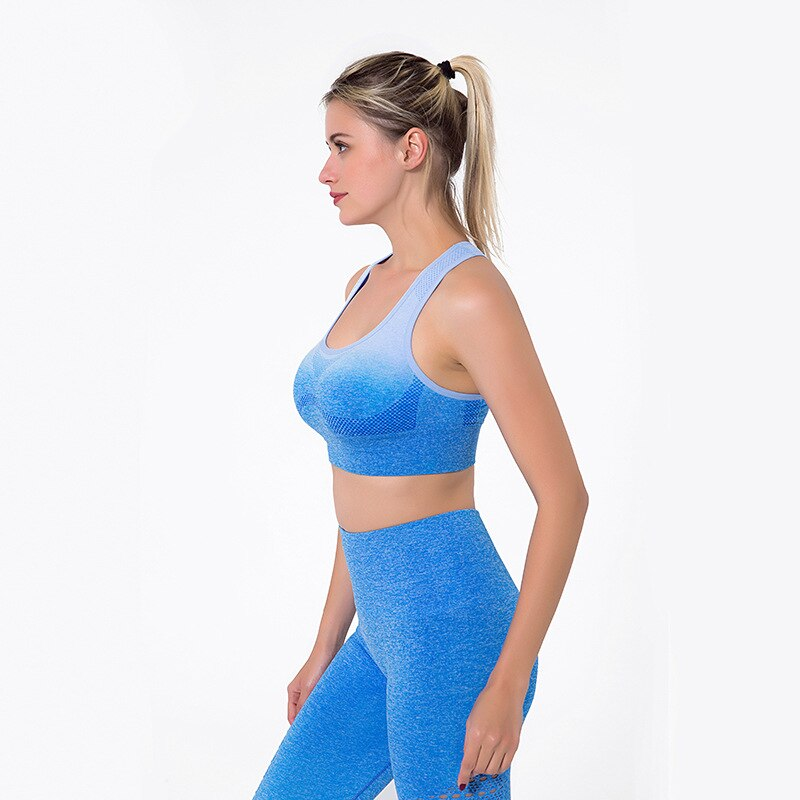 Astoria Seamless Ombre Sports Bra - Blue