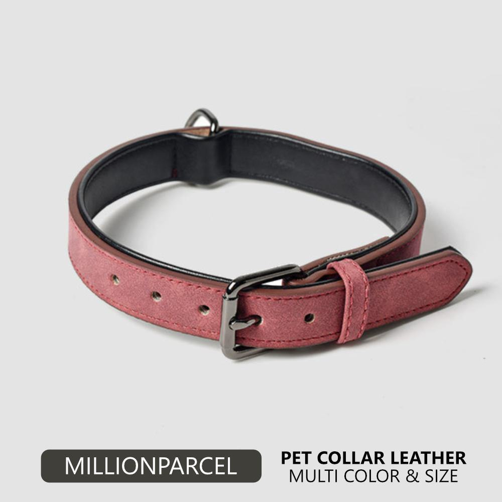 Pet Leather Collar-Pet Product-MillionParcel