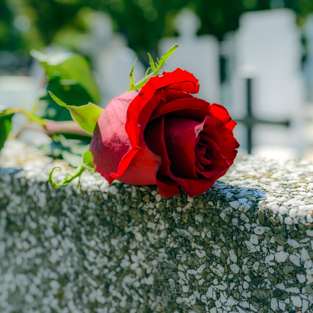 Causes of wrongful death