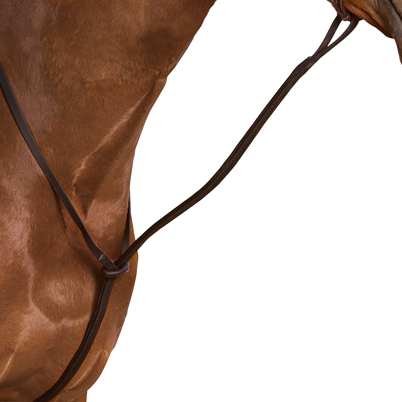 Wintec Standing Martingale - 321:30279554138200