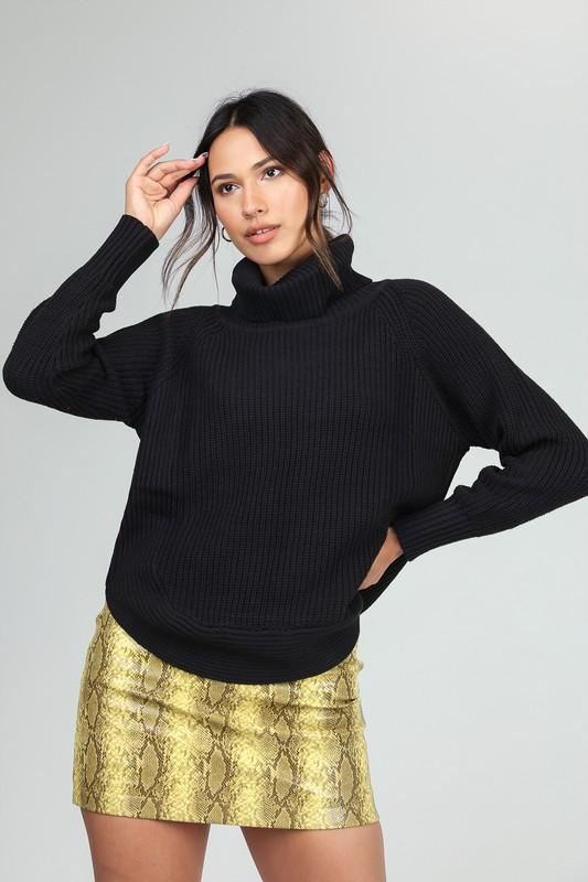 SNAPPY TURTLENECK SWEATER
