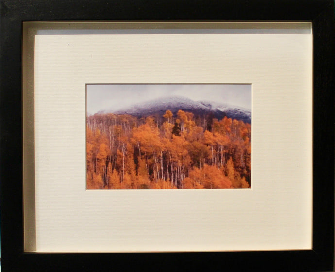 Breckenridge Fall- Framed Photography