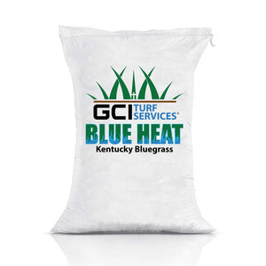 GCI Turf Blue Heat Kentucky Bluegrass Grass Seed