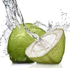 Coconut Water 12oz.