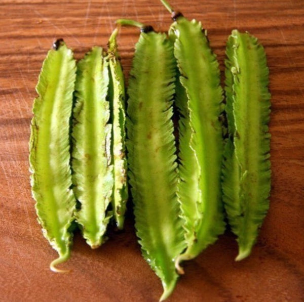 Pickled Winged Beans