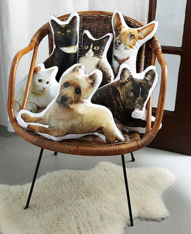 custom pet pillows in a chair