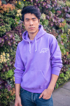 The Purple Color Hoodie