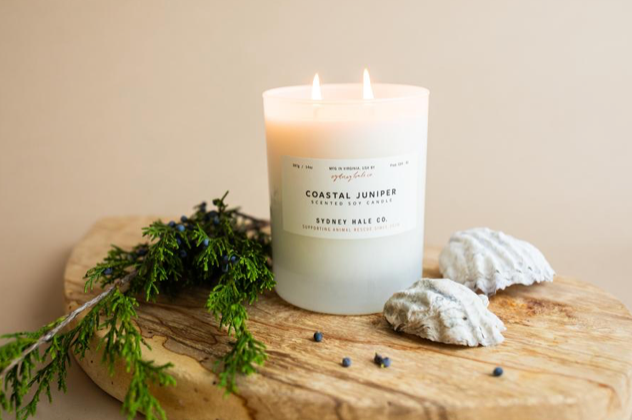 14 oz. Tumbler Candle- Coastal Juniper