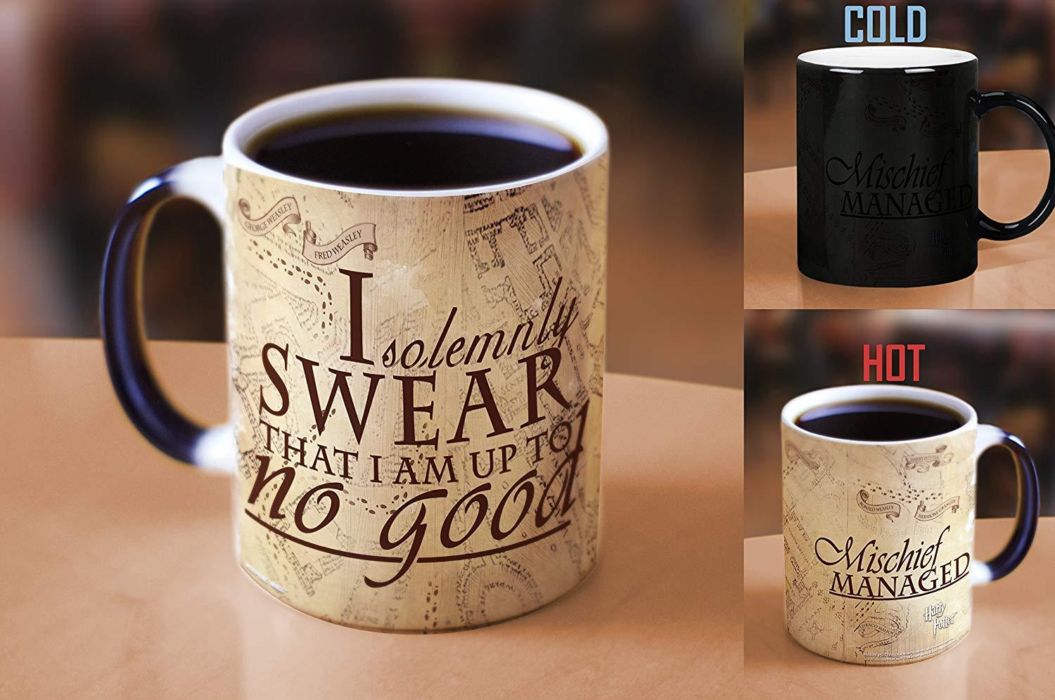 Harry Potter Quidditch Rules Heat Reveal Ceramic Coffee Mug - 11 Ounces