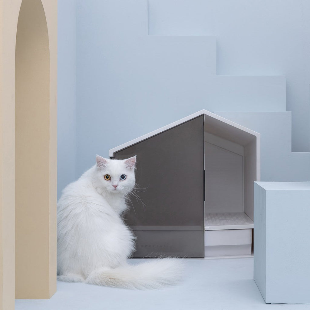 Magnificent House Style Exquisite Cat Sand Basin Betterfunny Home Interior And Landscaping Synyenasavecom