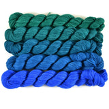 Gradient Fingering Mini Skein Set - Macaw