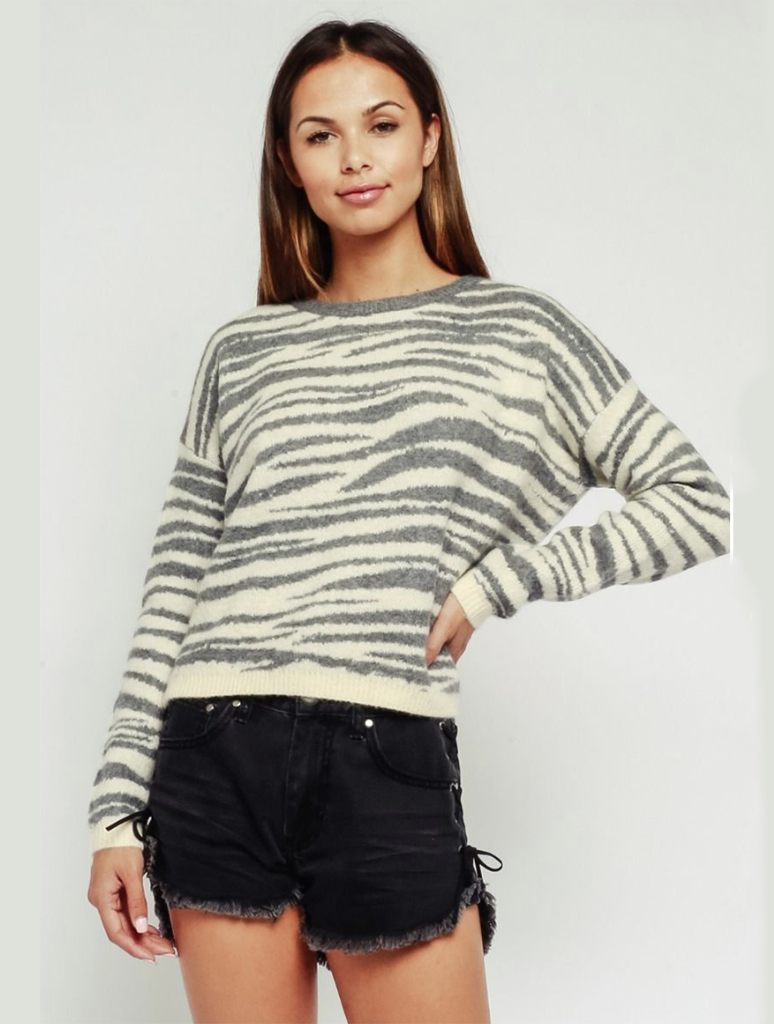 Olivaceous Zebra Pull Over Sweater in Grey