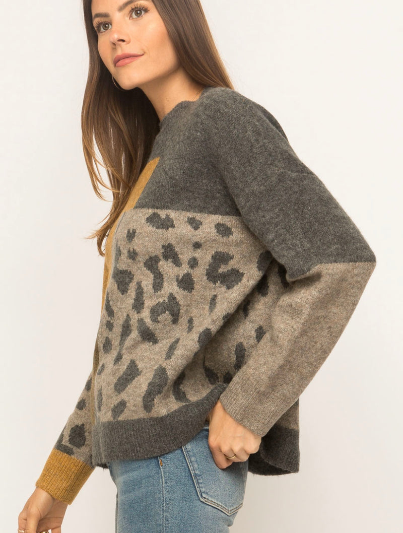 Mystree Pullover Top in Leopard