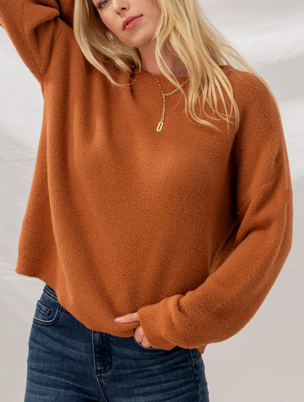 Trend Notes Fuzzy Crew Sweater Top in Rust
