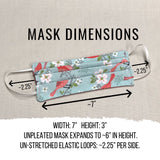 Gay Pride Cloth Face Masks with Filter Pocket, Reusable Washable Fabric Face Masks, LBGTQ Pride Face Masks, Double Layer Cotton Face Mask