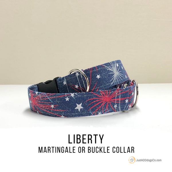 Patriotic Fireworks Dog Collar, Martingale Dog Collar, Denim Side-Release Buckle Dog Collar
