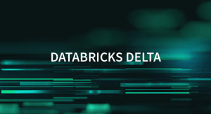 Databricks Delta — 1 user / 1 year