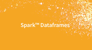 Getting Started with Apache Spark™ DataFrames — 1 user / 1 year