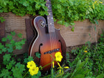 The Loar Honey Creek LM-310F F-Style Mandolin