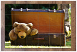 Teddy Bear Case -  Tile Mural