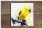 Canary Watercolor -  Accent Tile