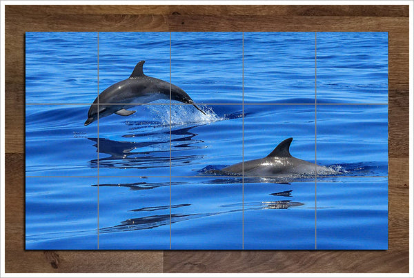 Swimming Dolphins -  Tile Mural