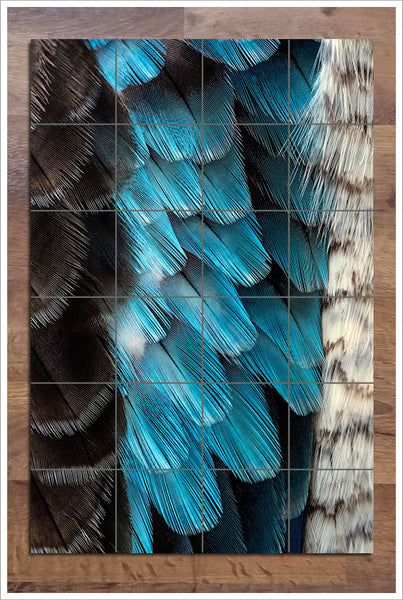 Bird Feathers - Ceramic Tile Mural