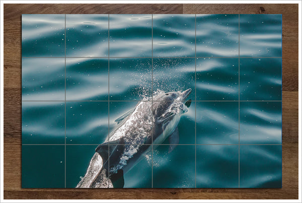 Swimming Dolphin -  Tile Mural