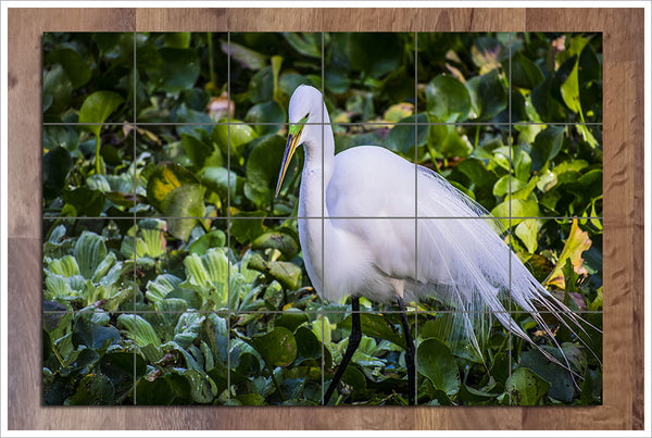 Great Egret -  Tile Mural