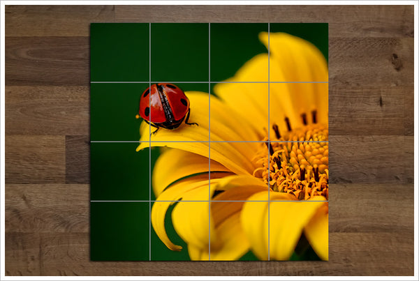 Lady Bug on Yellow Flower - Ceramic Tile Mural