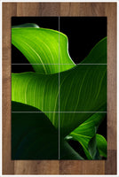 Leaves Abstract -  Tile Mural