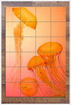Orange Jellies - Ceramic Tile Mural