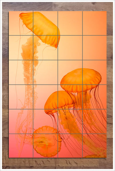 Orange Jellies -  Tile Mural
