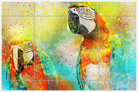 Macaw Parrots Painting -  Tile Mural