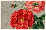Vintage Rose Collage -  Tile Mural