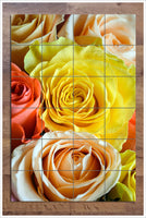 Roses Close Up -  Tile Mural