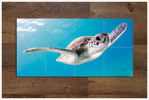 Sea Turtle Glide - Ceramic Tile Mural