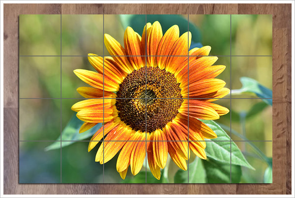 Sunflower 02 -  Tile Mural