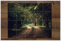 Tree Lined Road -  Tile Mural