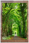 Tree Tunnel - Ceramic Tile Mural
