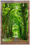 Tree Tunnel -  Tile Mural