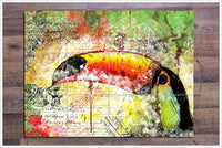 Toucan Collage - Ceramic Tile Mural
