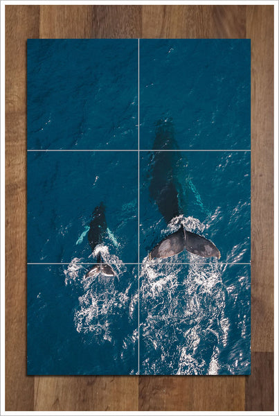Whale Tails -  Tile Mural